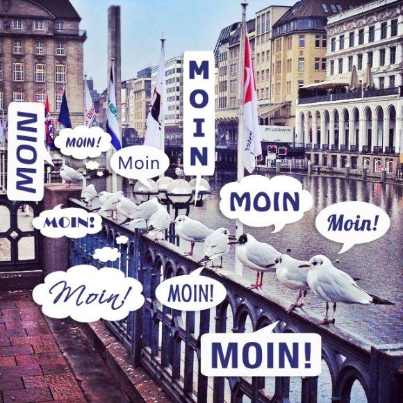 Die 10 besten Hamburch-Weisheiten by Typisch Hamburch | Moin Möwen Hamburg