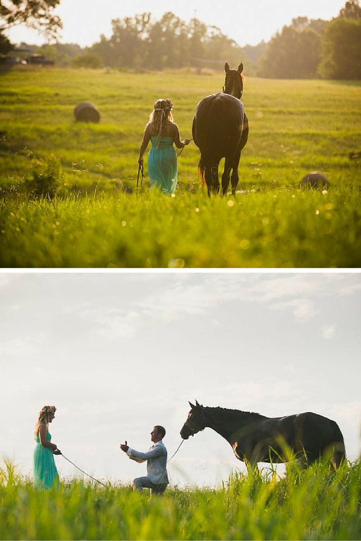 He included their horse in this surprise photo shoot proposal, and the results are stunning!