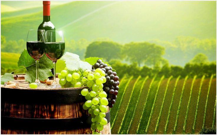 Bordeaux Wine Grapes Wallpaper | bordeaux wine grapes wallpaper 1080p, bordeaux wine grapes wallpaper desktop, bordeaux wine grapes wallpaper hd, bordeaux wine grapes wallpaper iphone