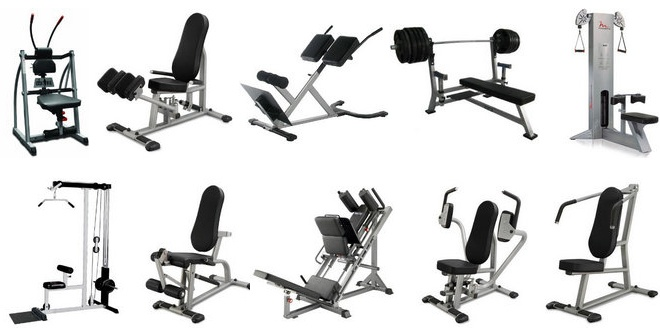 Best ideas about gym equipment names on pinterest