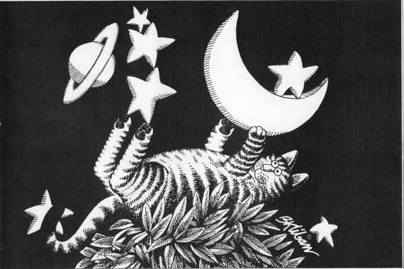 B Kliban Cat Original Vintage Art Print Stars by Victorianaprint