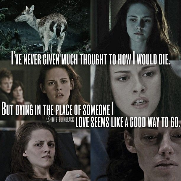 25 best ideas about twilight quotes on pinterest