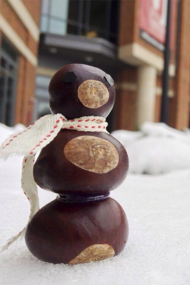 Buckeye snowman - maybe the only kind we can make in the south-haha