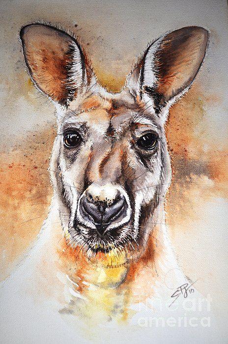 Kangaroo Big Red Sandra Phryce-Jones