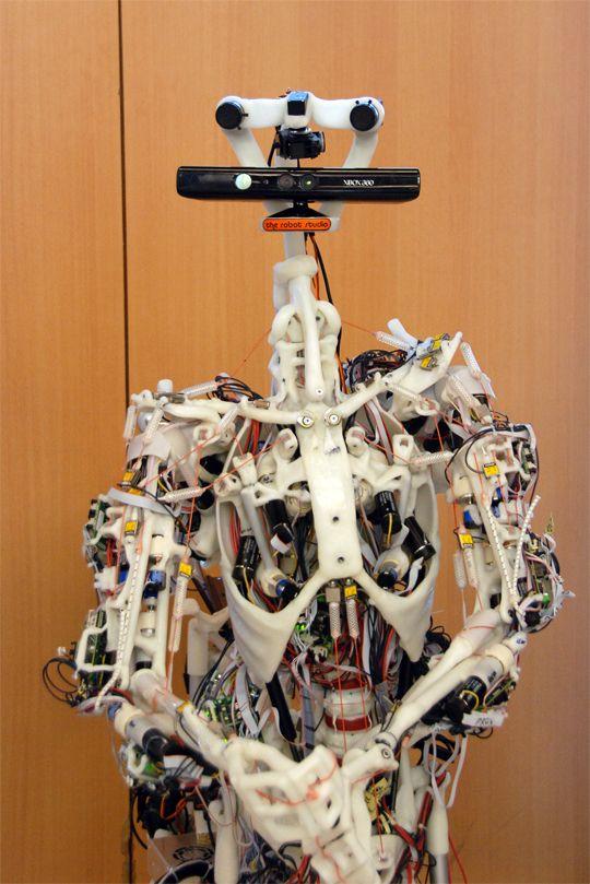 INNOROBO 2012 Kinect The robot studio