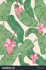Image result for banana leaf sketch