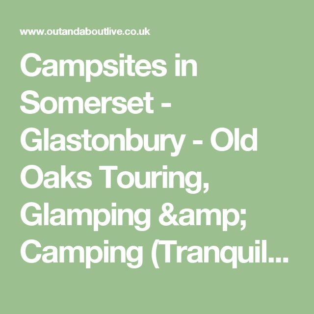 Campsites in Somerset - Glastonbury - Old Oaks Touring, Glamping & Camping (Tranquil adults-only) - UK Campsite Finder - Out and About Live