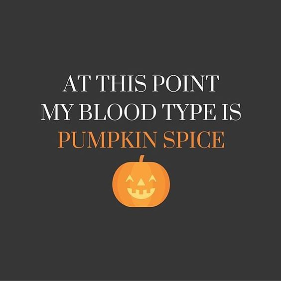 Best 25+ Funny halloween quotes ideas on Pinterest | Happy ...