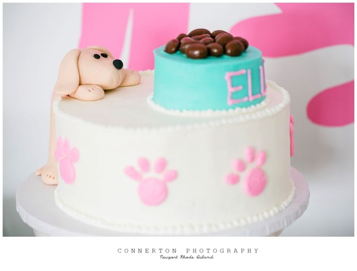 Preppy Puppy Dog Birthday Party Theme for Girls- Cake