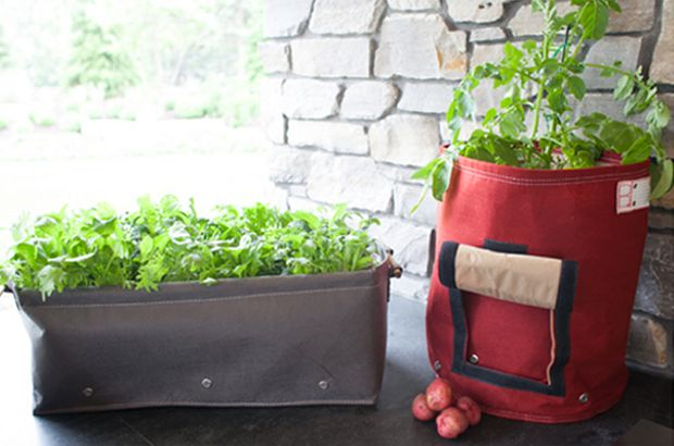 Here is our raised bed planter & our Potato Planter.