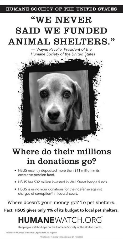 This is very disturbing!!!!!  Support your local rescues and shelters.  You know where your money is going!!! They also wanted to kill the Michael Vick dogs & have no problem with him owning dogs. They also have no problem with people shooting feral cats to control the population.