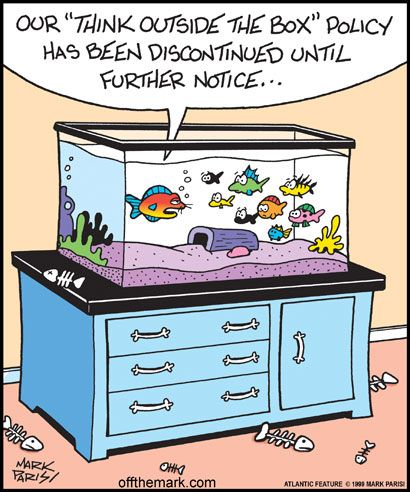 Think outside the box aquarium funnies pinterest the for Places that sell fish near me