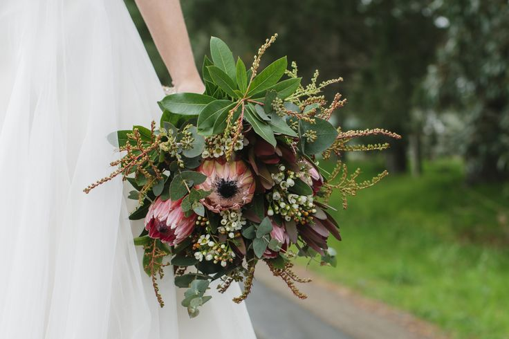 Native Bouquet featuring Protea, Silvan Red and lush foliage // photography Liz Arcus