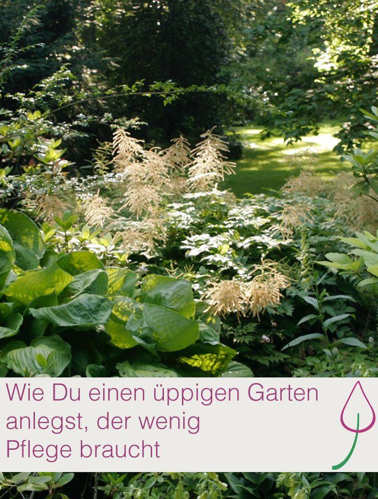 Perfect Ideen wie Du einen pflegeleichten Garten anlegen kannst