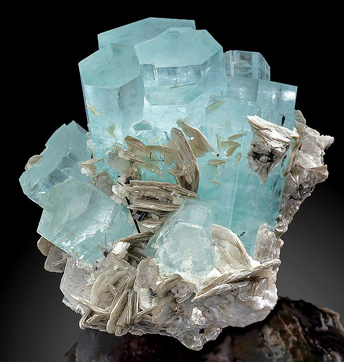 Gemmy blue Aquamarine crystals with accenting Muscovite blades on AlbiteChumar Bakhoor, Northern Pakistan