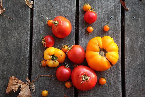 Beauties.Jardin Potager, Scrumptious Food, Tomatoes Green, Pretty Things, Nola Gardens, Fabulous Food, Food Photography, Fabrics Inspiration, Heirloom Tomatoes
