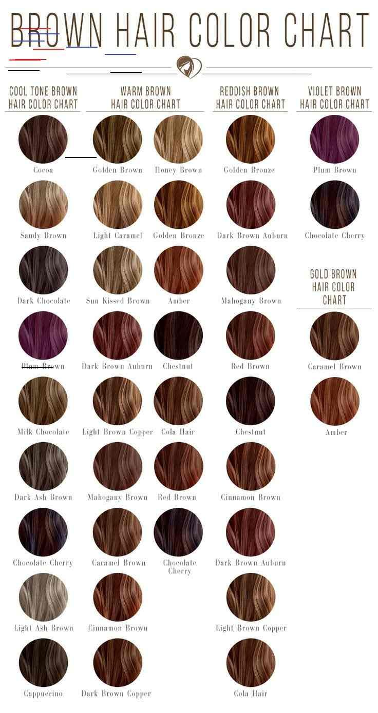 24 Shades Of Brown Hair Color Chart To Suit Any Complexion Discovering The Brown Hair Color Chart Is Hair Color Chart Brown Hair Color Chart Brown Hair Shades