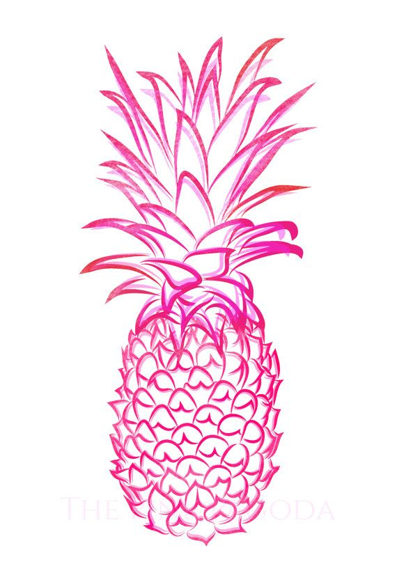 Pink Pineapple Giclee 2 By Thepinkpagoda On Etsy 3000