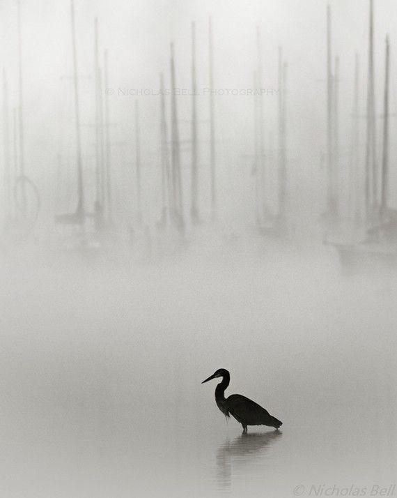nautique Photographie Photographie Photographie noir et blanche, photographie de voilier, brouillard, décor nautique