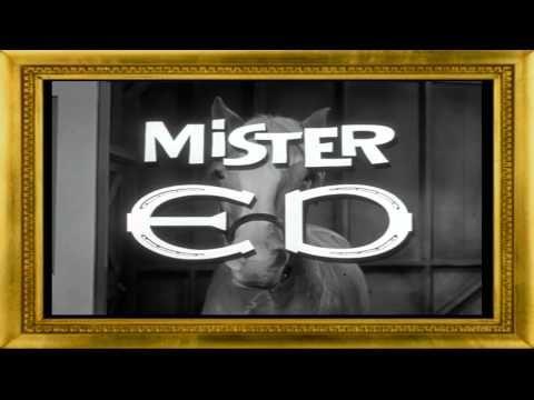▶ Koń który Mówi- Mister ED-intro-serial - YouTube