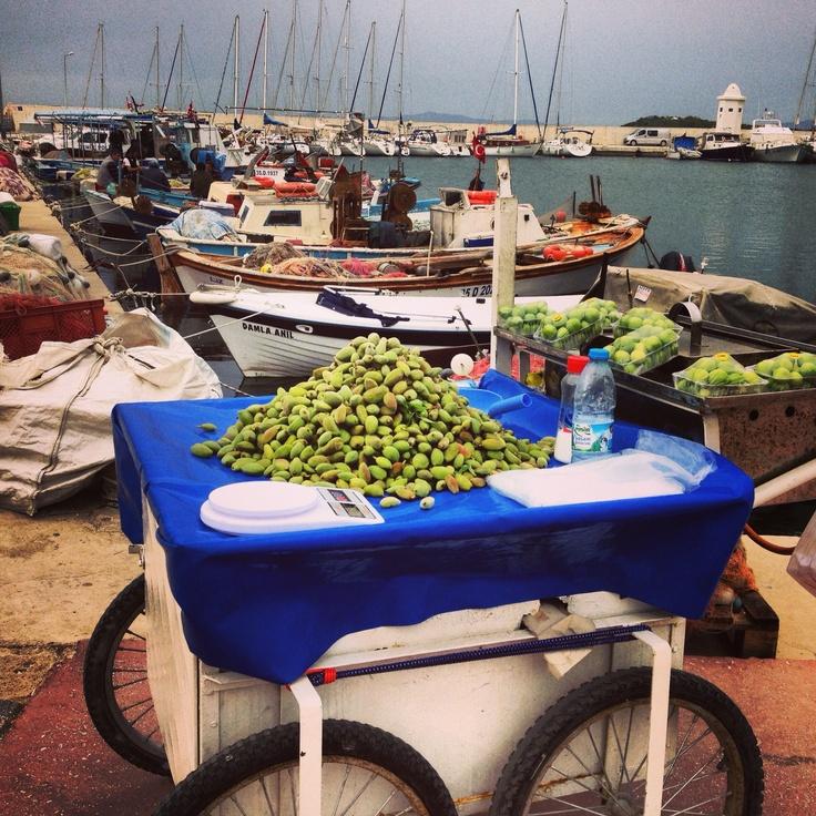 Tasty Turkey. Seacoast of Urla, Izmir Turkey with Whole Journeys