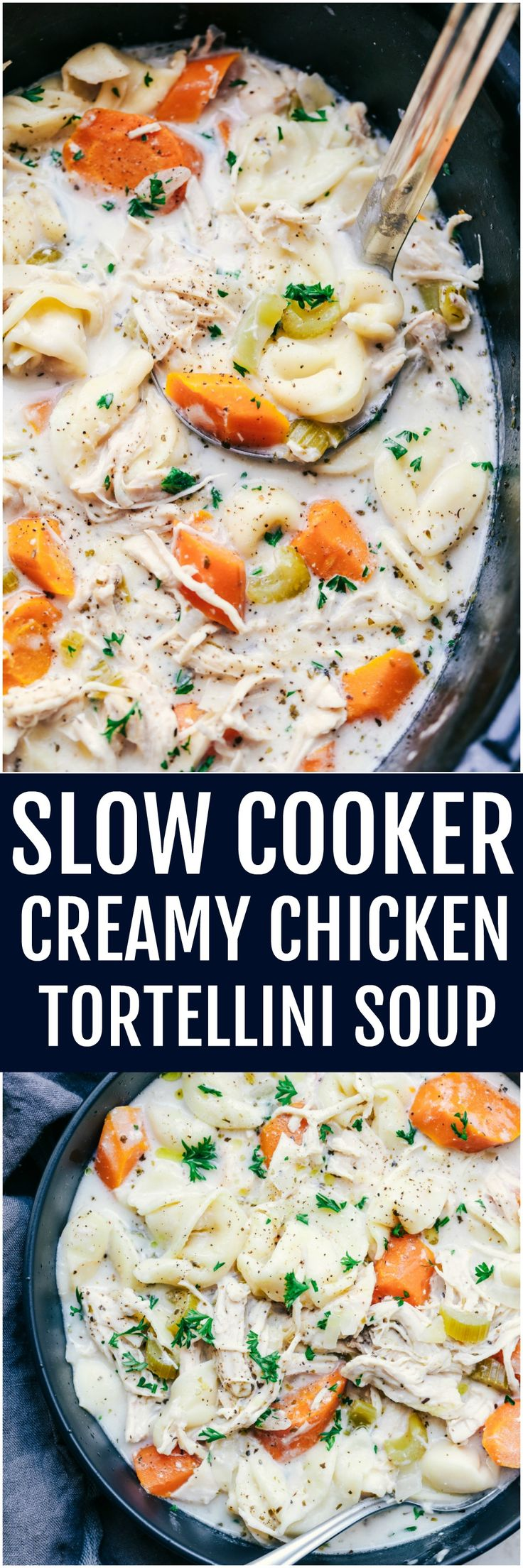 Slow Cooker Creamy Chicken Tortellini Soup is such a delicious and comforting soup.  Loaded with carrots, celery, onion, chicken and tortellini, this creamy soup will become a favorite!