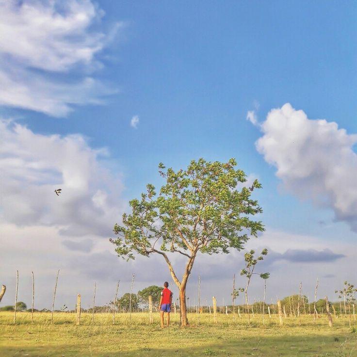 Vivir con la naturaleza te llena de vida . #idcolombia #colombia #nature #idcol_jesuflorez
