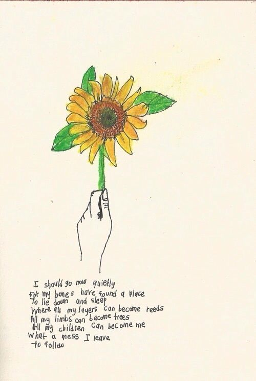 soulmate24.com Photo #poem #quote #sunflower #beauty #nature