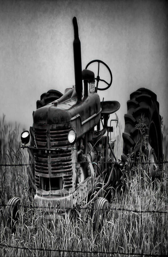B& W Of Old Farm Tractor