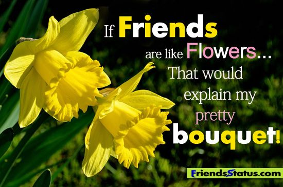 If friends are like flowers, that would explain my pretty bouquet. <3   We are the only florist open 24/7 in #Vegas. Visit our website at http://www.robertsfloristvegas.com/