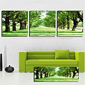 Stretched Canvas Art Landscape Green Trees Ro... – RUB p. 2 182,16