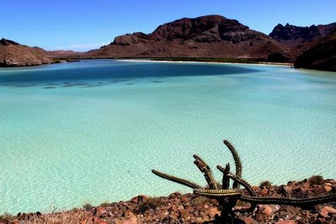 GoBajaCA | Top 10 Beautiful Spots You Need to Visit on the Baja California Peninsula