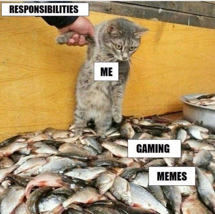 Saturday's 55 fresh dank memes that will split your sides