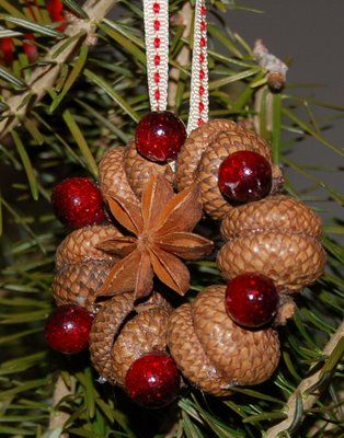 Ornament made from acorn tops and star anise set with cranberry red beads. @Tricia Bimber McCray &@Tiffany Bimber wish we would have had Pinterest when we use to try to sell the acorns outside of Grannies house in Findley Lake we could have made something like this!