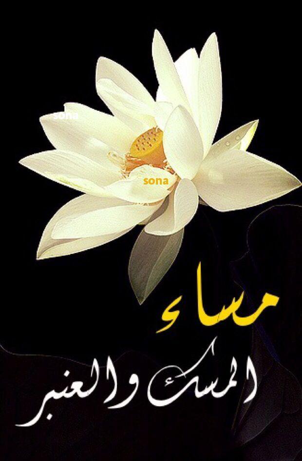 مساء الخير شعر Good Morning Images Flowers Good Evening Greetings Evening Greetings
