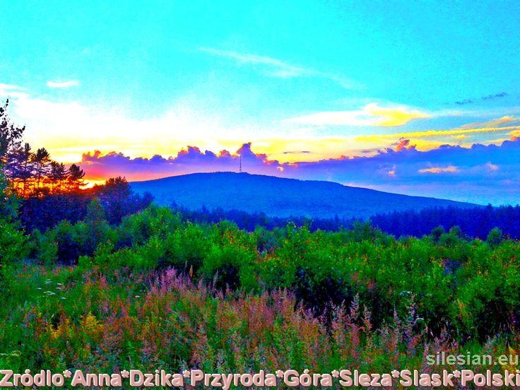 Sleza Mountain - Poland