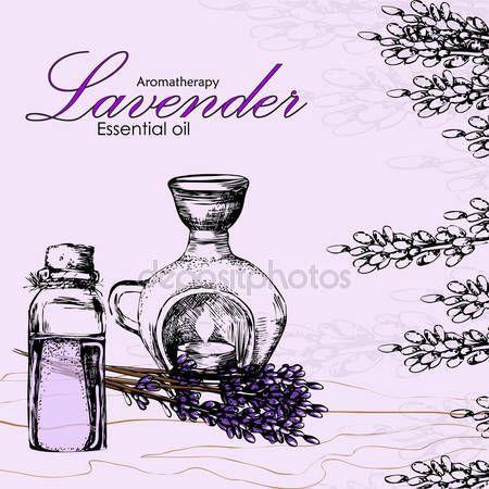 Vektorové ilustrace esenciálního oleje levandule — Stocková ilustrace #106736274