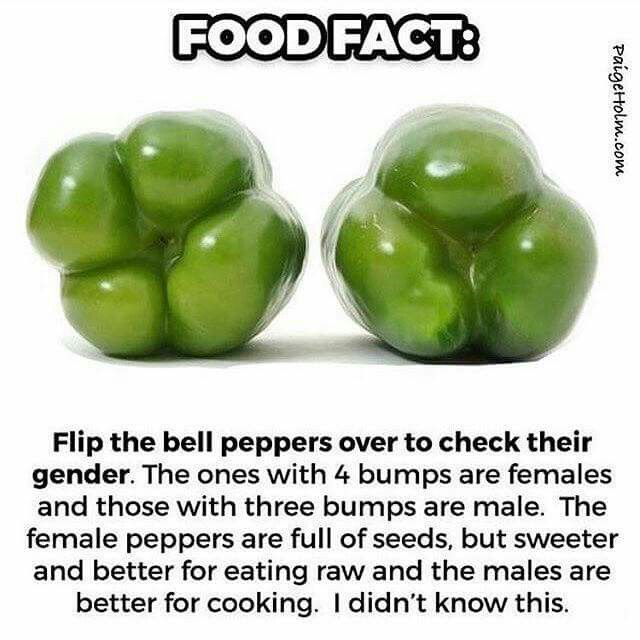 Get to know your bellpeppers
