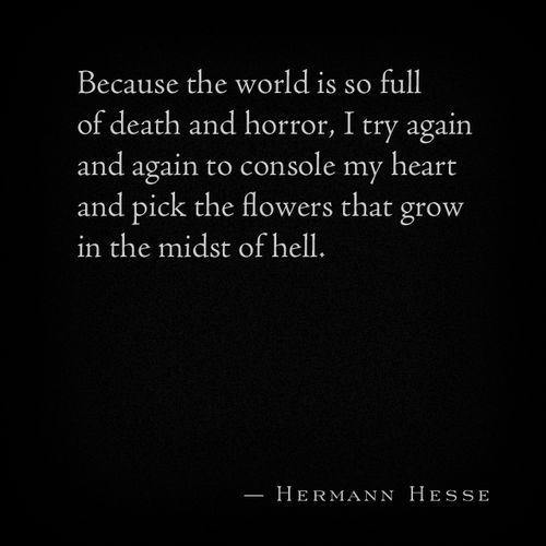 """Because the world is so full of death and horror, I try again and again to console my heart and pick the flowers that grow in the midst of hell."" - Hermann Hesse"