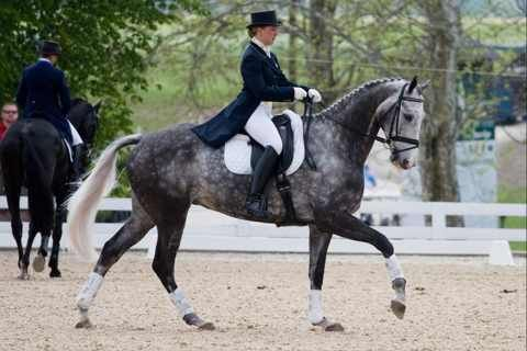 Tiana Coudray and Ringwood Magister, Rolex 2011