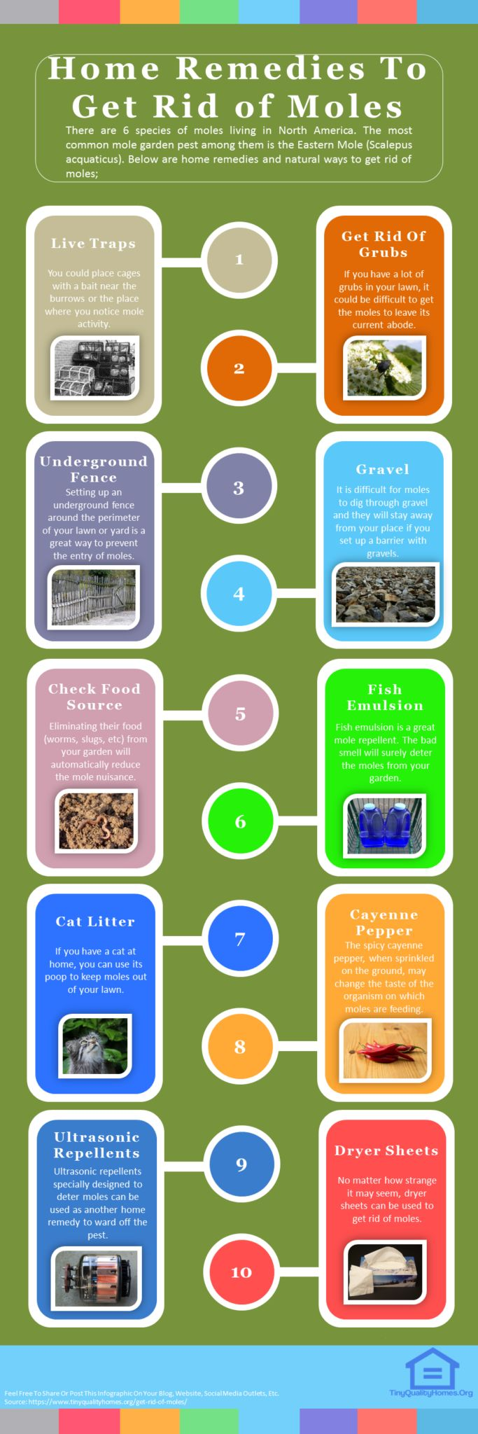 17 Home Remedies To Get Rid of Moles In Your Yard Fast: This Guide Shares Insights On The Following; How To Get Rid Of Ground Moles With Dawn Soap, How To Get Rid Of Moles In Yard Without Killing Them, How To Get Rid Of Moles In Yard Fast, How To Get Rid Of Moles In Yard With Castor Oil, How Do You Use Castor Oil To Get Rid Of Moles?, How To Get Rid Of Moles In Yard Home Remedy, How To Get Rid Of Moles In Yard With Juicy Fruit Gum, How Do I Control Moles In My Yard?, Etc.