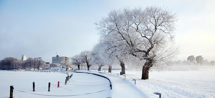 Vinter i Västerås, hamnen