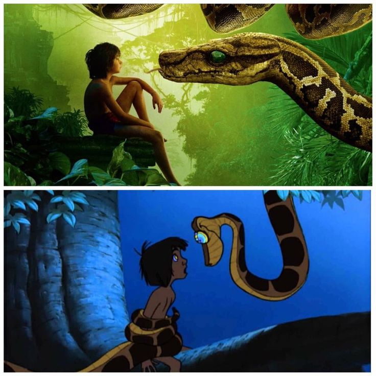 The Jungle Book: Moglie and Kaa