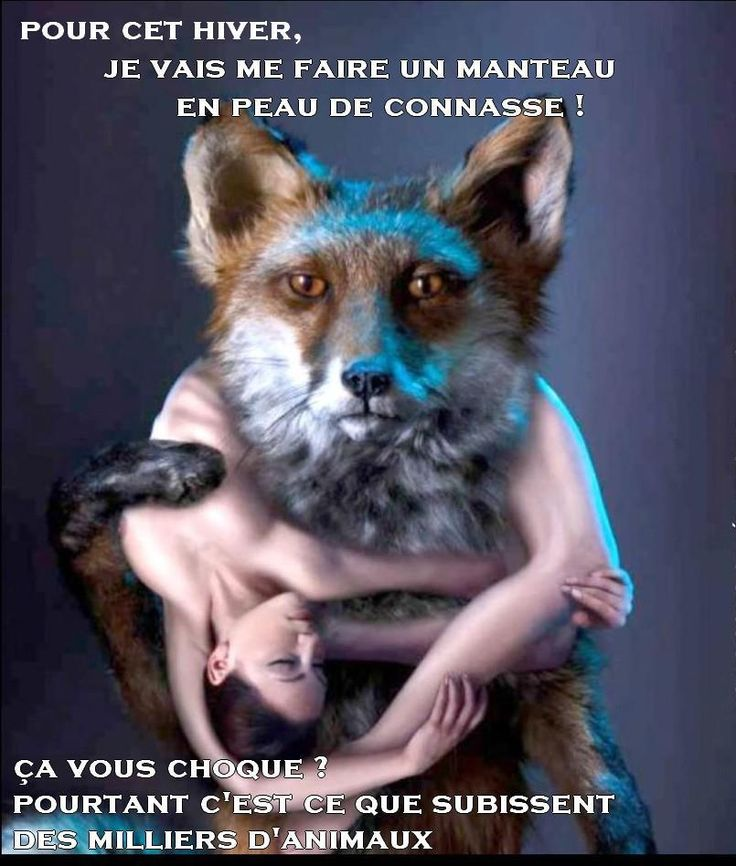 """"""" This winter, I'm going to make me a skin coat bitch. Are you shocked ? However this is what's happening to thousands of Foxes, Minks... Every year."""" That's just for fashion while this is CRUEL and NOT essential. Can't we love fashion and have a morality ?"""