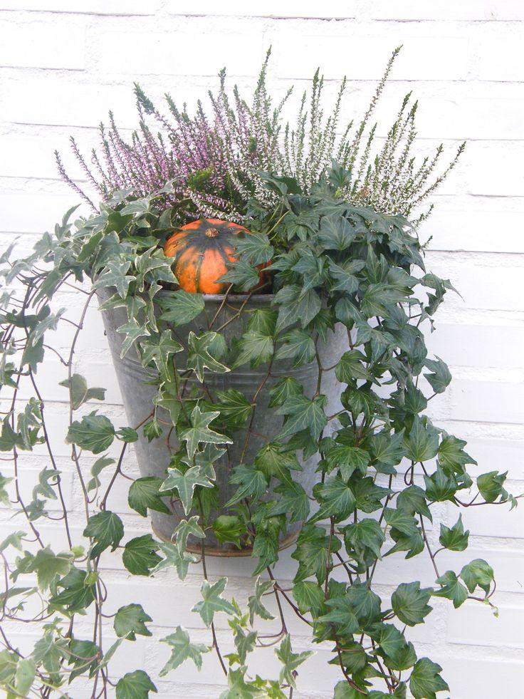 Herfstdecoratie in zinken emmer.