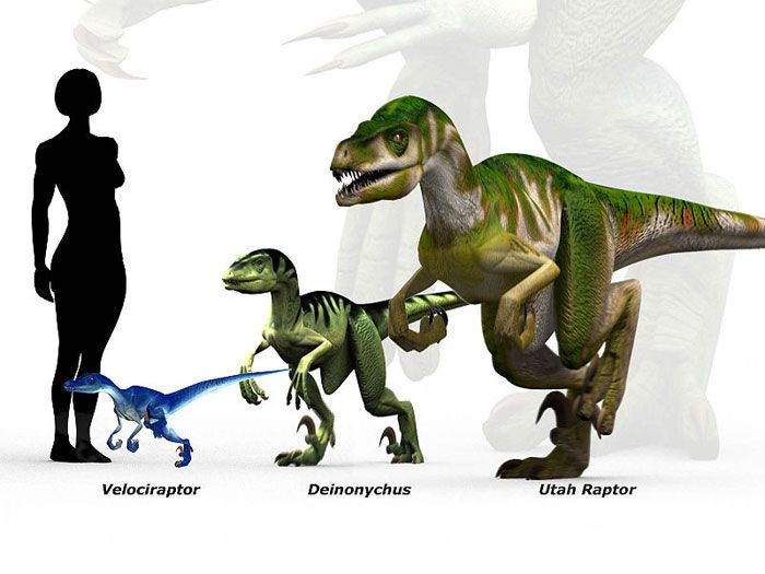 dinosaur and human scale - Google Search | critters for ...