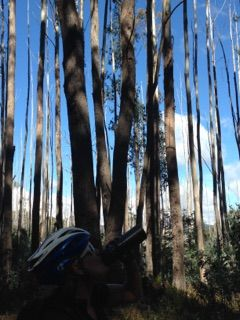 The Epic Trail. Mount Buller 2016.