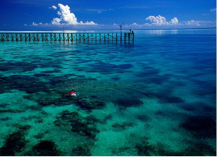 DERAWAN Island and SANGLAKI Archipelago, located in the Sulawesi Sea on the coastal shelf of East Kalimantan, these islands have powder-fine beaches, lush interiors and mysterious lagoons with stingless jellyfish.