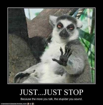 lmfao: Stop Talk, Animal Faces, Demotivational Posters, So True, Funny Stuff, Motivation Posters, Funny Animal, So Funny, Funny Posters