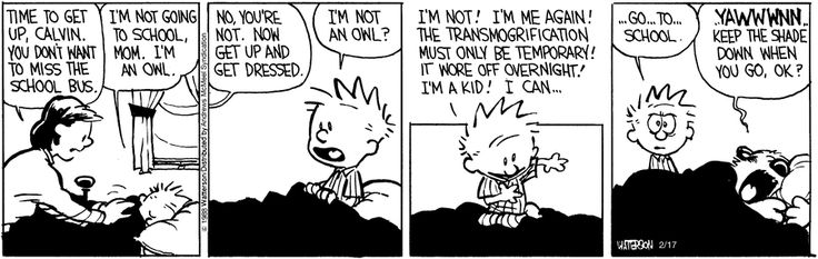 Calvin and Hobbes by Bill Watterson for Feb 17, 2018 | Read Comic Strips at GoComics.com